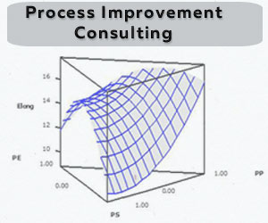 Process Improvement Consulting